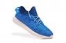 Кроссовки Adidas Yeezy Boost 350 Blue